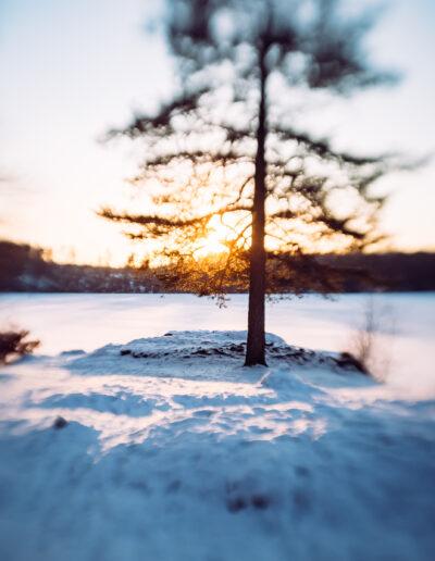 Fantastiske vinterdager